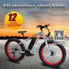 350w 48V10.4AH  26 inch 27 speed electric snow bike