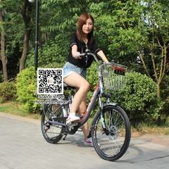 Electric bicycle 48v 24 inch 6 speed aluminum alloy bike